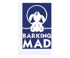 THE BARKINGMAD FOUNDATION